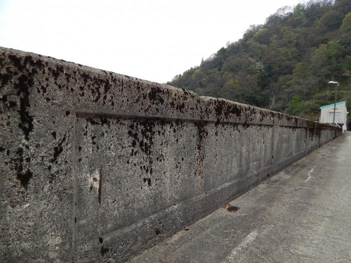 DSCN0162上市川ダム