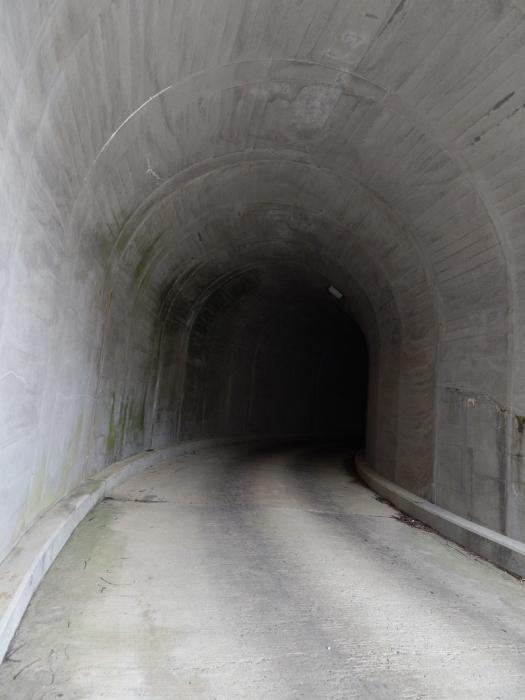 DSCN0176上市川ダム