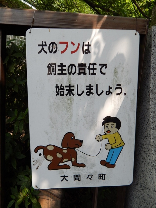 DSCN0584高津戸ダム