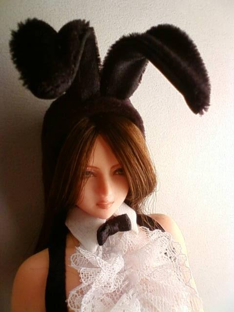 bunny_2016_b.jpg