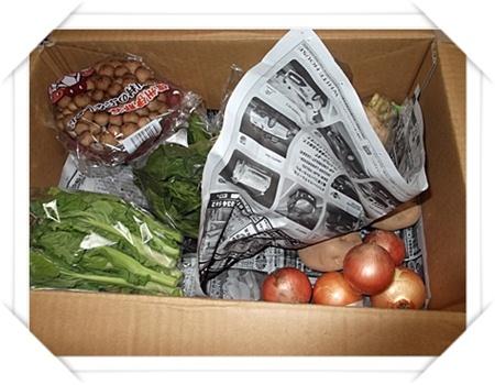 2012年2月28日らでぃっしゅぼーやの野菜