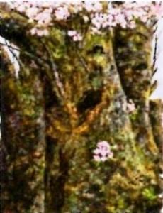 中田規之子「桜」
