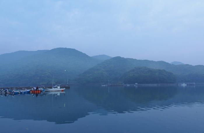 朝もやの湾 1
