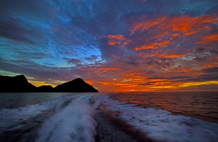観光船の波