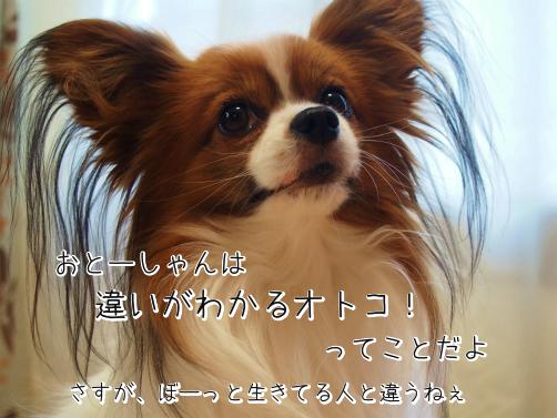 u_BdQ3N3アタマずき4