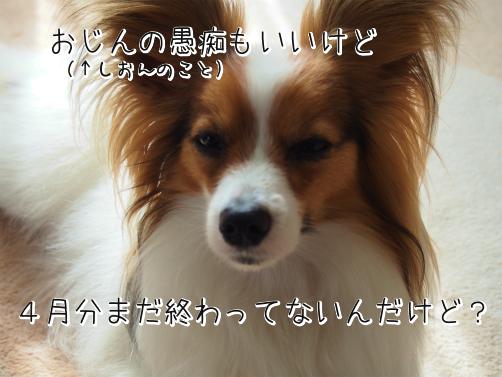 T7kG1Yg_気付いた6