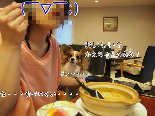 vJn5ZcJK三重桜7