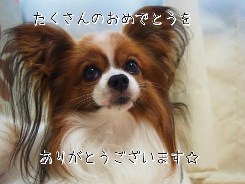rpz_h5Ctお礼1