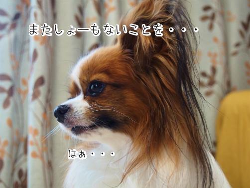 ou_AD7Nwしりとり1