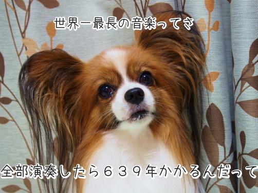 8uuu_4ZW雑学3