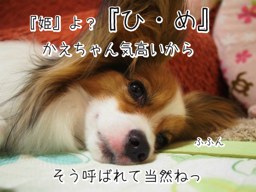 mhc_N1gaなまえ7