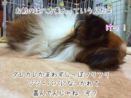 ZYzzMSRa愛想よし3
