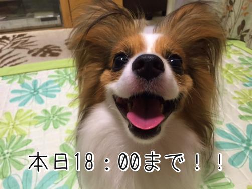mdRiwfYgエントリー最終2