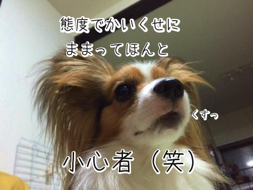 r9K_w8Gj語る