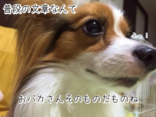 5bYjRTaDぼやき
