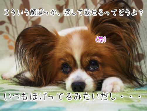4camUJ9Tほげぇ6