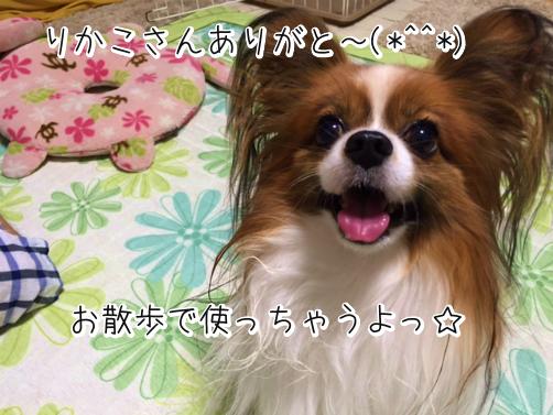 iomg0HVzキラきん4