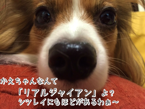 Fm3bxjYi○○2
