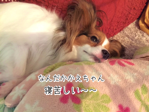 X3kuxNwfブログ用語