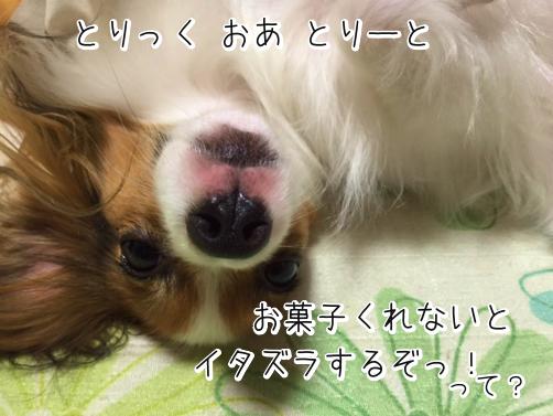 flvJ1G7mはろうぃん4
