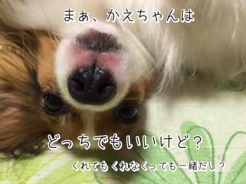 mHDSYVH3はろうぃん5