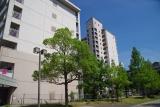 神戸市営名谷駅東住宅 高層の251棟