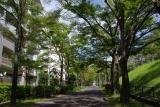 猛暑の中でも木陰が;神戸市営名谷駅東住宅