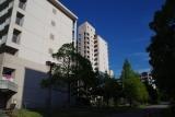 猛暑の中での訪問;神戸市営名谷駅東住宅