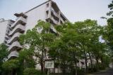 神戸市営名谷駅東住宅:暑さ和らぐ中で