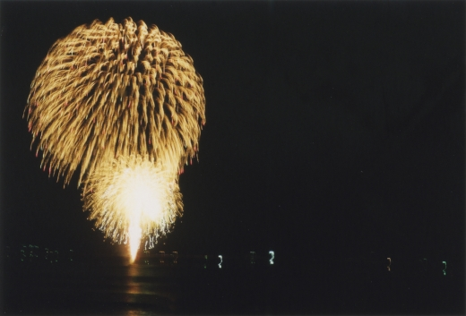 TOY-1786_Nikon.jpg