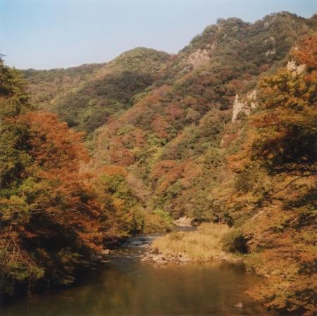 TOY-1821_Yashica.jpg