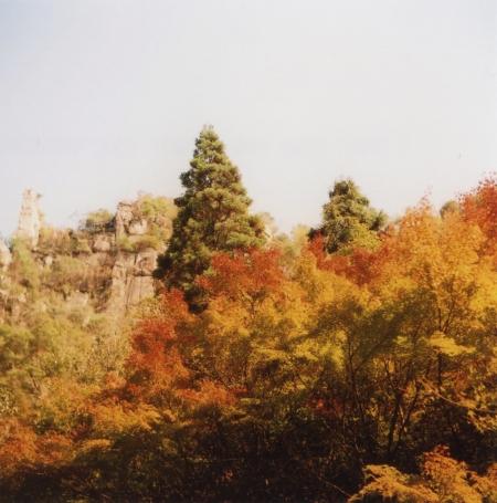 TOY-1827_Yashica.jpg