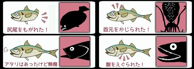 えwrうぇrfバス
