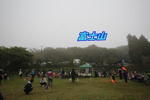 1V3A8172.jpg
