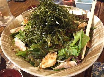大井町 魚箱2_R