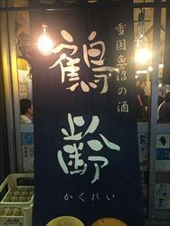 大井町 魚箱9_R