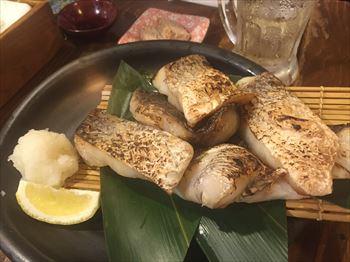 大井町 魚箱6_R