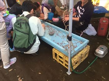 鹿島神社大祭2016・4_R
