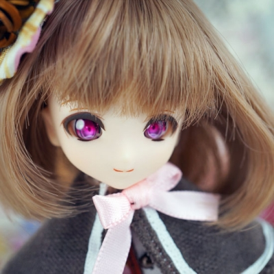 2016-1025-chamomile-04-b.jpg