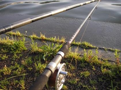 10尺メバル竿