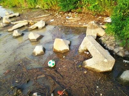 泥濁りの江戸川