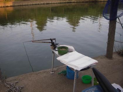 坂川の釣り座