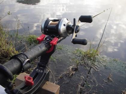 リールウキからミャク釣り