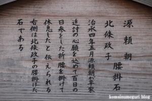 三島大社(静岡県三島市大宮)43