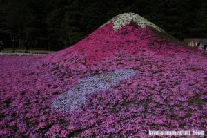 富士芝桜まつり23