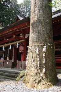 東口本宮冨士浅間神社(静岡県駿東郡小山町須走)47