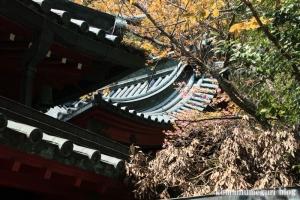 箱根神社(神奈川県足柄下郡箱根町元箱根)44