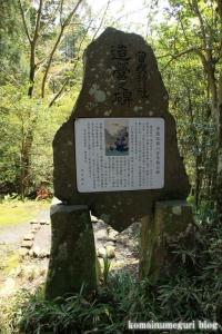 箱根神社(神奈川県足柄下郡箱根町元箱根)16