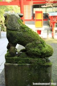 箱根神社(神奈川県足柄下郡箱根町元箱根)25