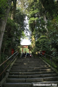 箱根神社(神奈川県足柄下郡箱根町元箱根)29